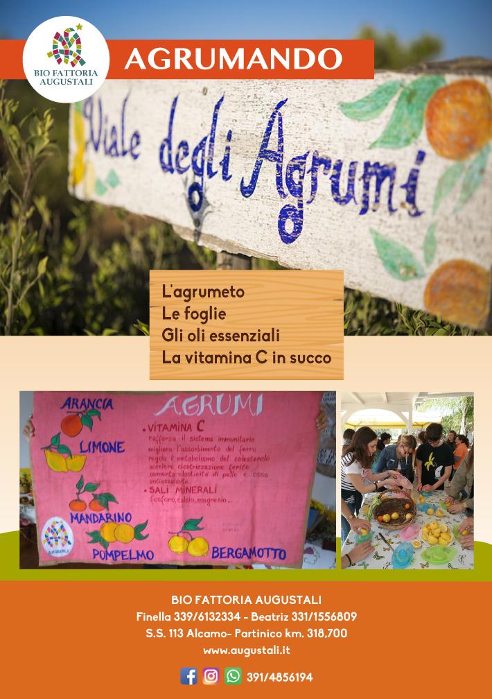 locandine_laboratori_didattici2018_agrumando