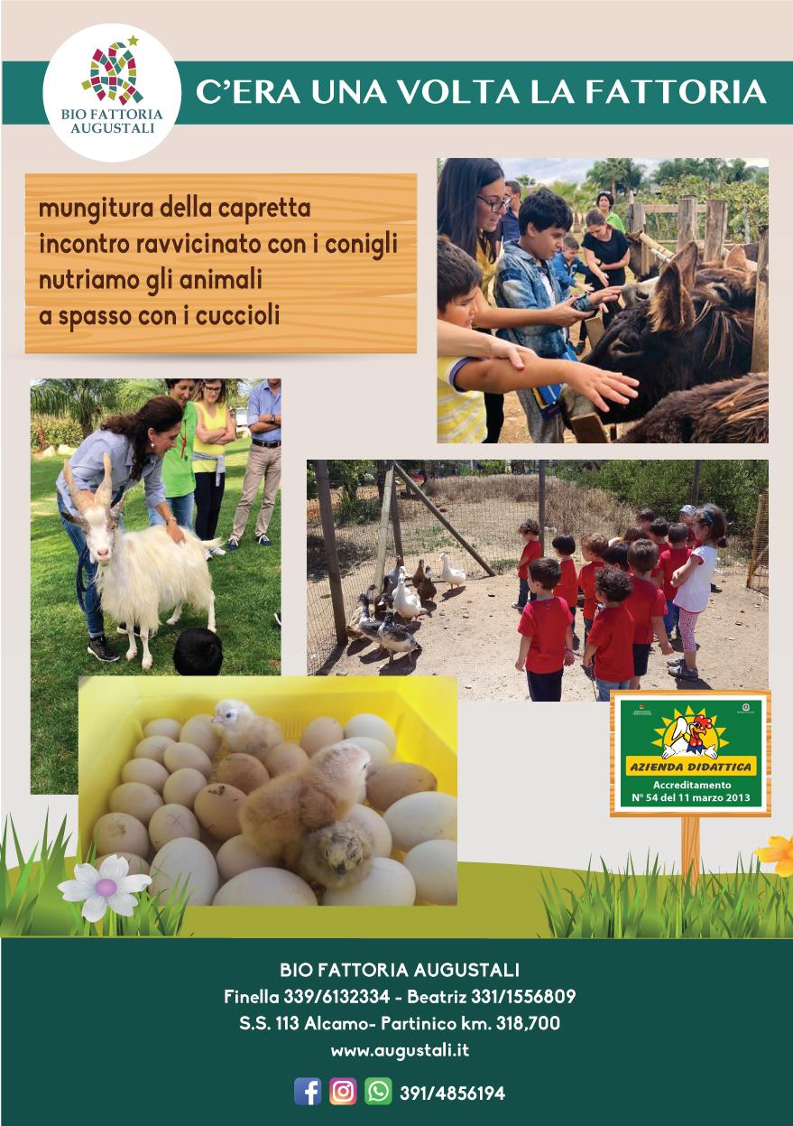 locandine_laboratori_didattici2019_cera-una-volta-la-fattoria-animali-generica