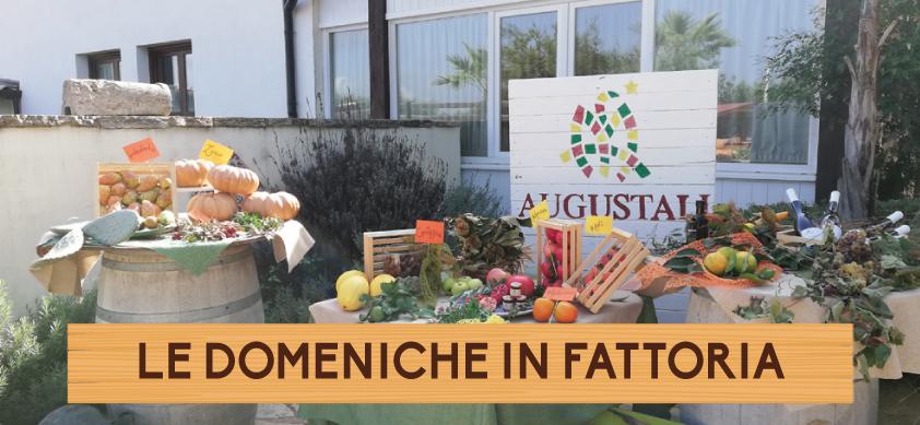 augustali-le-domeniche-in-fattoria-2019