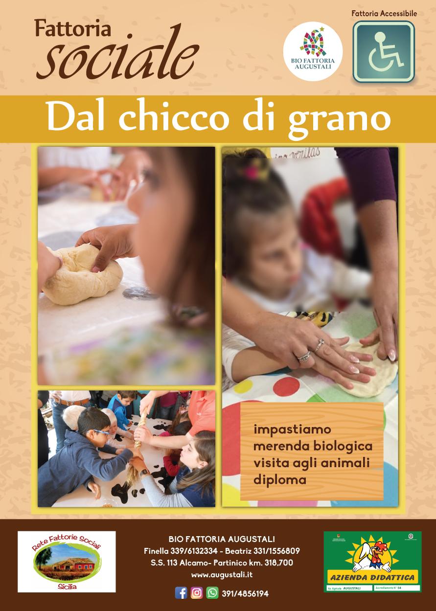 locandine-fattoria-sociale-DAL-CHICCO-DI-GRANO