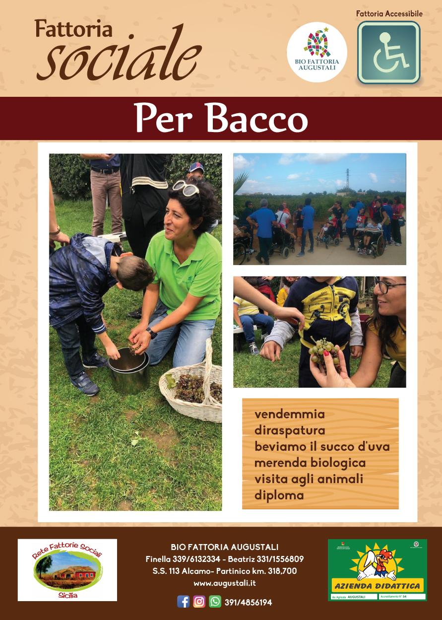 locandine-fattoria-sociale-PER-BACCO