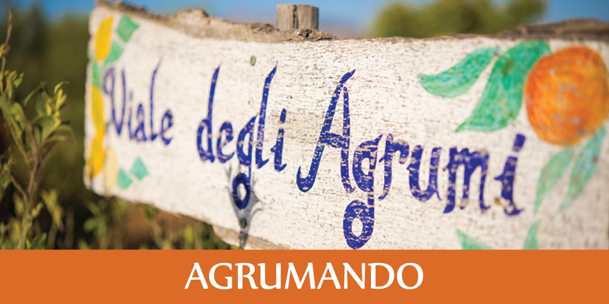slide-fattoria-sociale-AGRUMANDO
