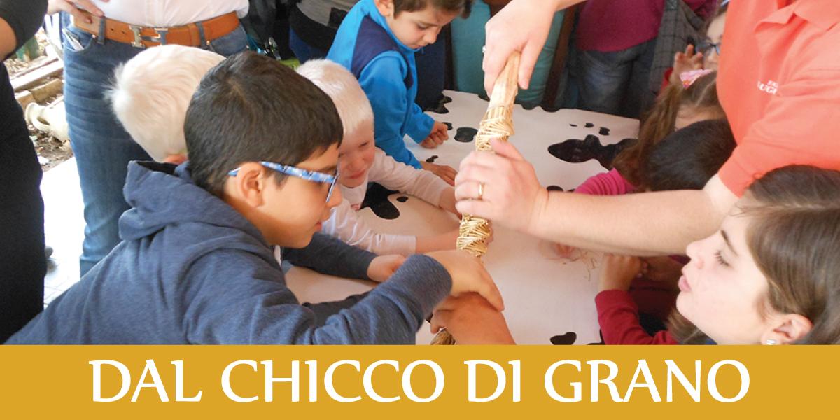 slide-fattoria-sociale-CHICCO-DI-GRANO