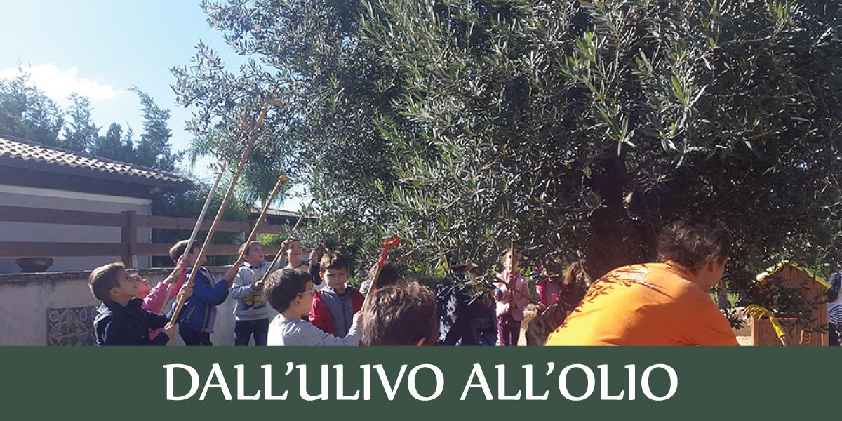 slide-fattoria-sociale-ULIVO