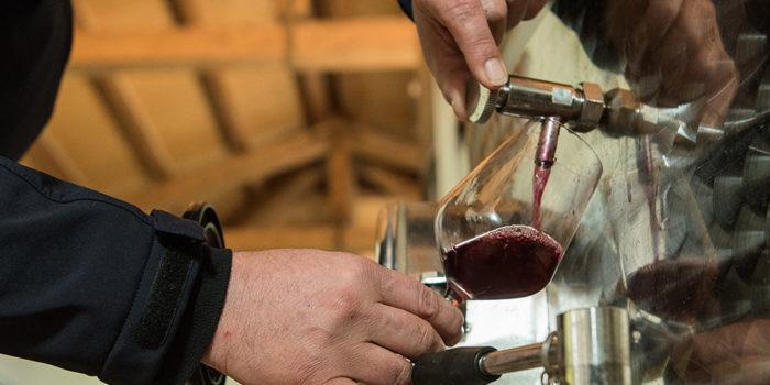 degustazione del vino_fattoria augustali_vincenzo bambina (3)