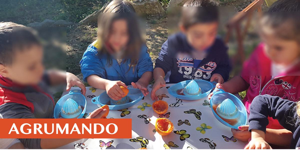 slide-HOME-la-didattica-2019-agrumando