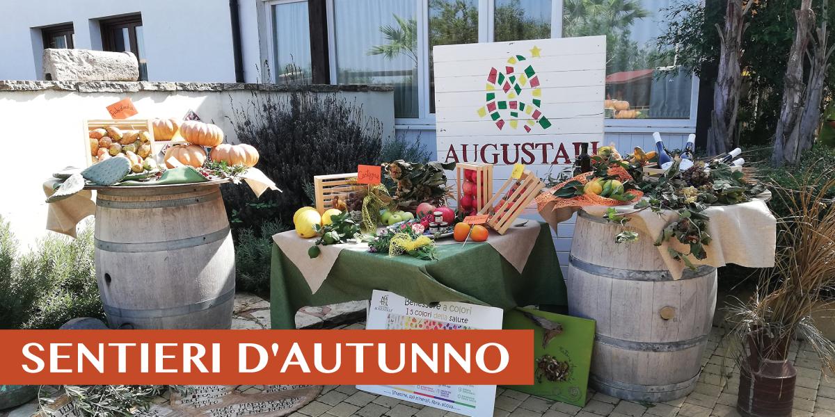slide-HOME-la-didattica-2019-sentieri-autunno